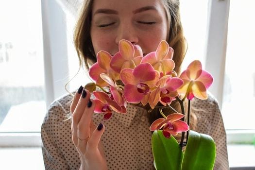 目を閉じて、花の香りを楽しむ女性